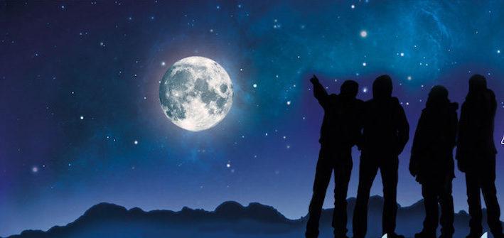 Noches de estrellas platalea Huelva Verano
