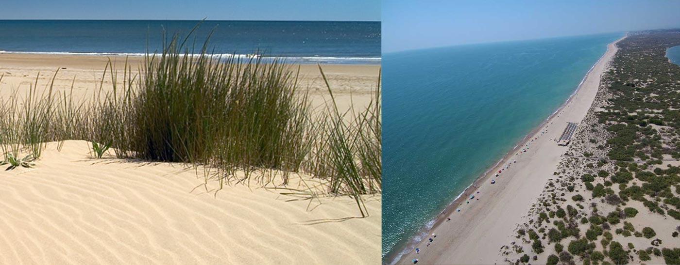Playas vírgenes de Huelva Flecha del Rompido Nueva Umbría