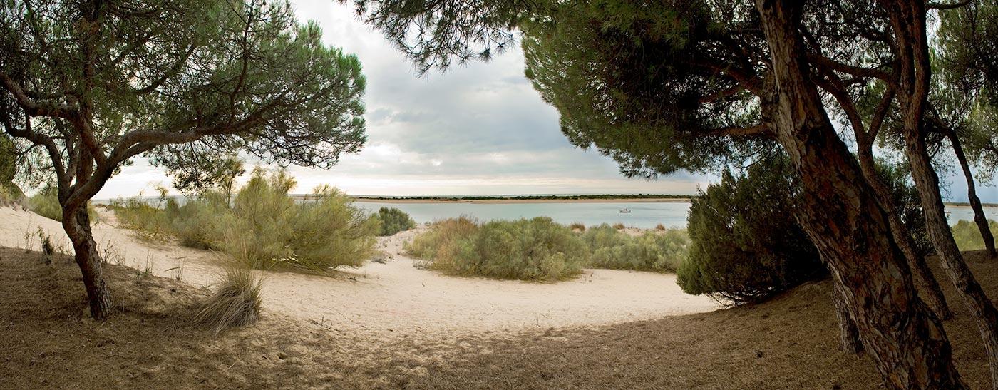 La Playa Virgen de la flecha del Rompido Huelva