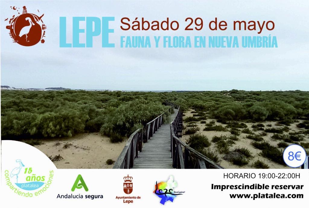 senderismo nueva umbría lepe actividad actividades playa Huelva costa mayo  caminar flora fauna