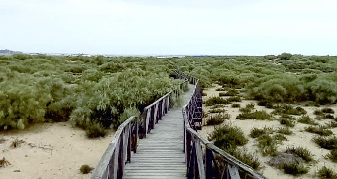 senderismo nueva umbría lepe actividad actividades playa Huelva costa