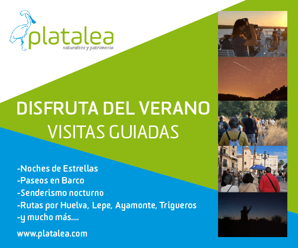 actividades en Huelva en Huelva