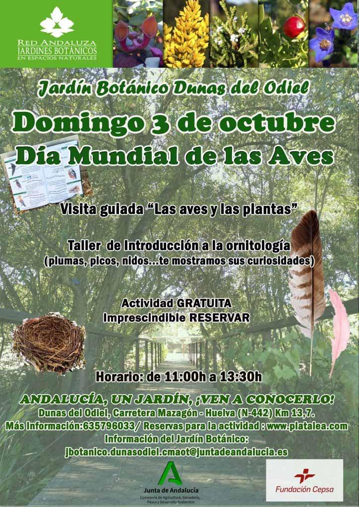 3 de octubre dia mundial de las aves Huelva platalea